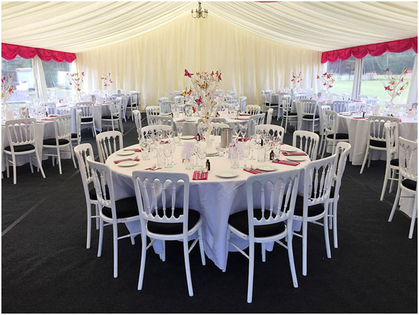 Marquee Butterfly Centrepieces